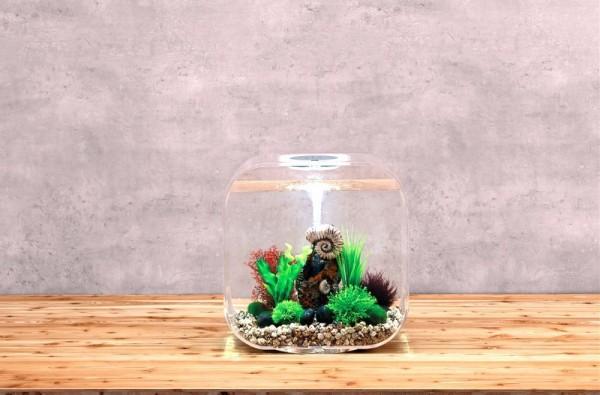 biOrb Aquarium LIFE 30 MCR transparent