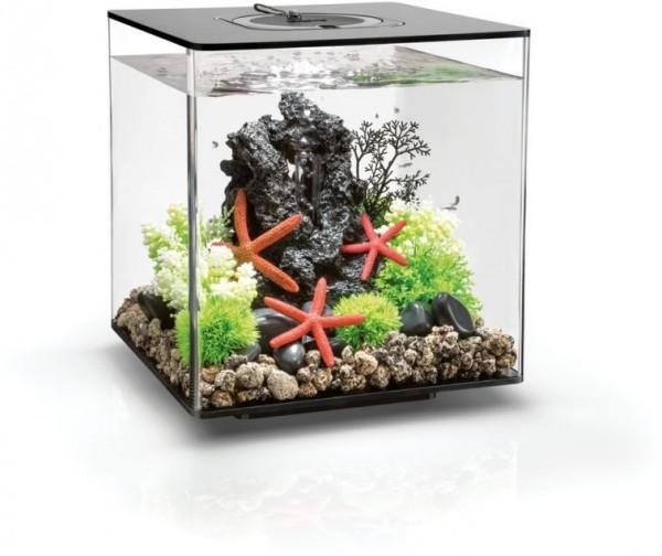 biOrb Aquarium CUBE 30 MCR schwarz