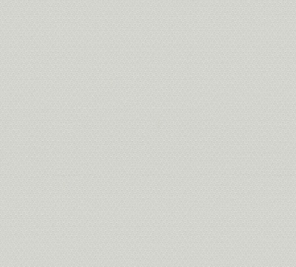 A.S. Création Vliestapete Trendwall, Uni Grau 371213