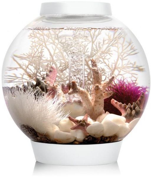 biOrb Aquarium CLASSIC 15 MCR weiß