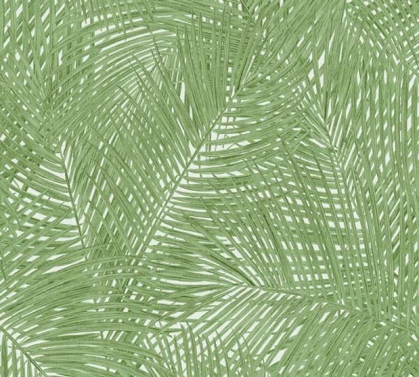 A.S. Création Vliestapete Sumatra, Grün Weiß 373715